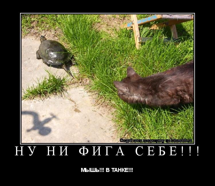 Котоматрица: НУ НИ ФИГА СЕБЕ!!! МЫШЬ!!! В ТАНКЕ!!!