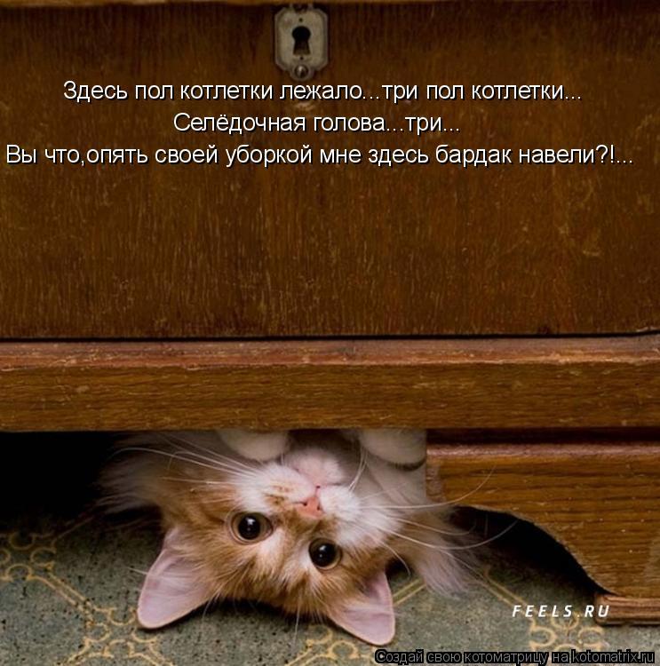 Котоматрица: Здесь пол котлетки лежало...три пол котлетки... Селёдочная голова...три... Вы что,опять своей уборкой мне здесь бардак навели?!...