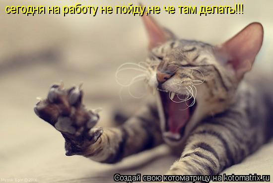 Котоматрица: сегодня на работу не пойду,не че там делать!!!