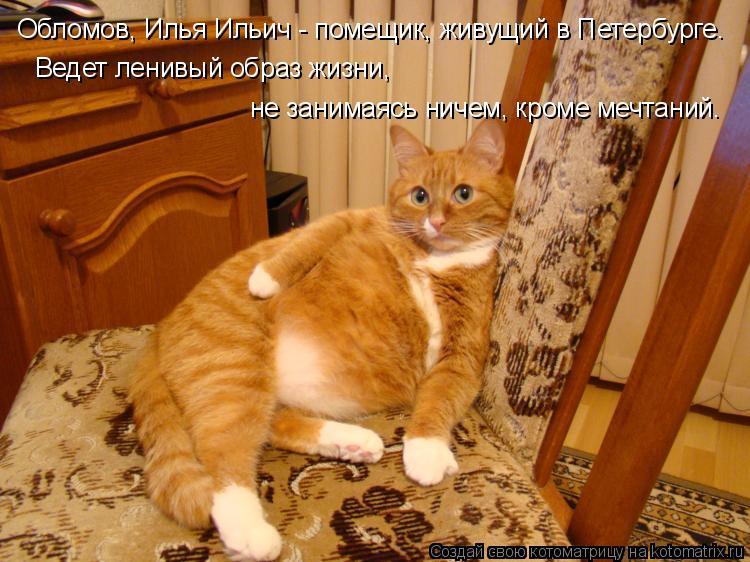 Котоматрица: Обломов, Илья Ильич - помещик, живущий в Петербурге. Ведет ленивый образ жизни, не занимаясь ничем, кроме мечтаний.