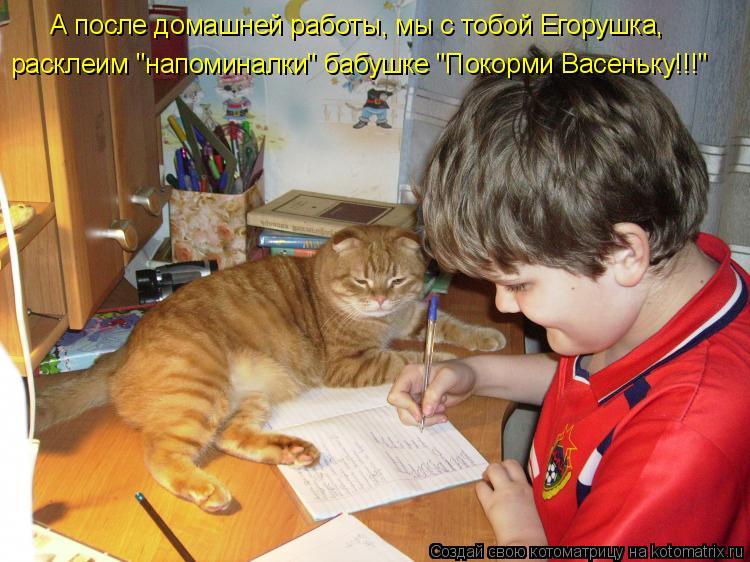 """Котоматрица: А после домашней работы, мы с тобой Егорушка, расклеим """"напоминалки"""" бабушке """"Покорми Васеньку!!!"""""""