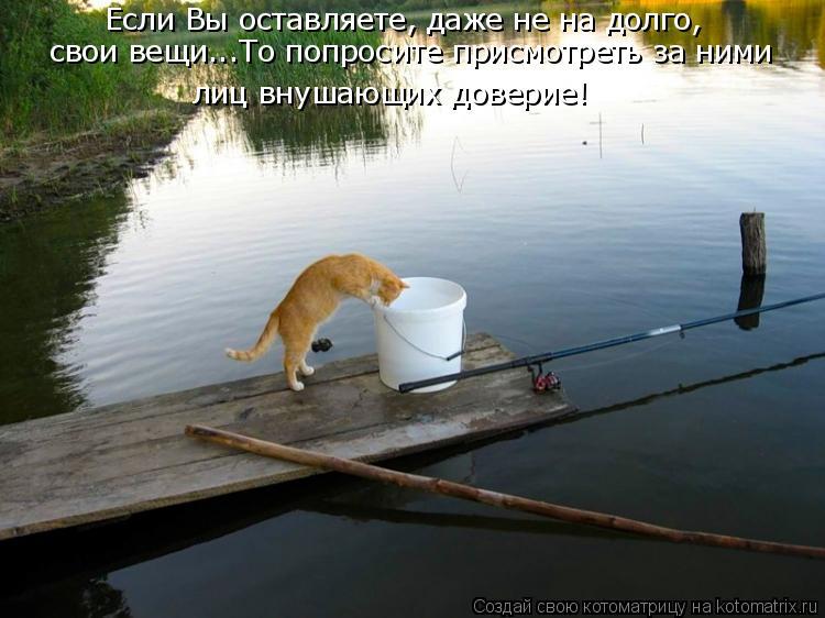 Котоматрица: Если Вы оставляете, даже не на долго, свои вещи...То попросите присмотреть за ними  лиц внушающих доверие!