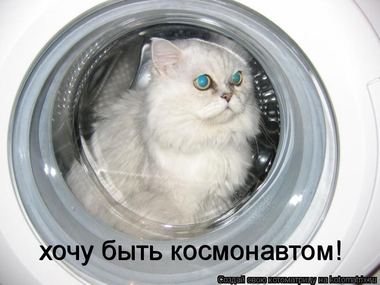 Котоматрица: хочу быть космонавтом! хочу быть космонавтом!