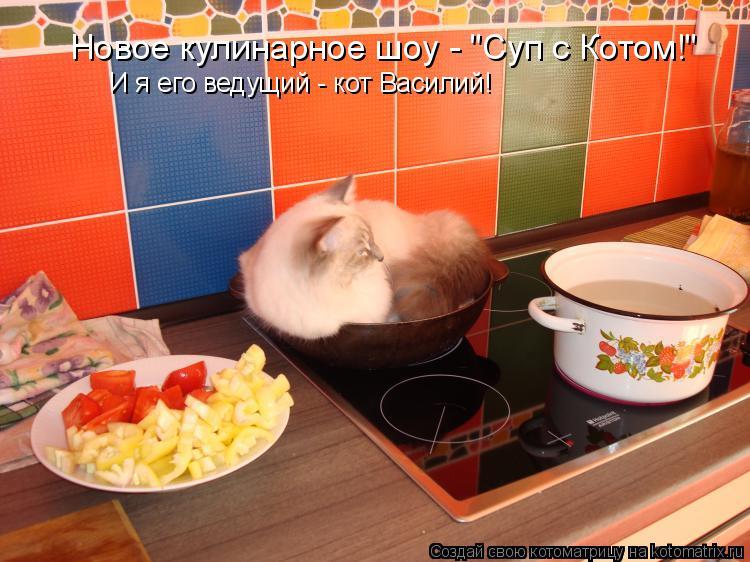 """Котоматрица: Новое кулинарное шоу - """"Суп с Котом!"""" И я его ведущий - кот Василий!"""