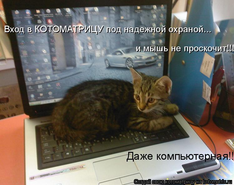 Котоматрица: Вход в КОТОМАТРИЦУ под надежной охраной...  Даже компьютерная!!! и мышь не проскочит!!!