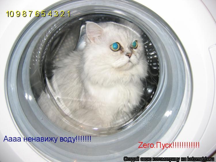 Котоматрица: 10 9 8 7 6 5 4 3 2 1 Zero.Пуск!!!!!!!!!!!! Аааа ненавижу воду!!!!!!!