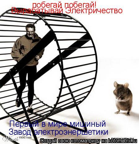 Котоматрица: побегай побегай! побегай побегай! Вырабатывай Электричество Первый в мире мишиный  Завод электроэнершетики