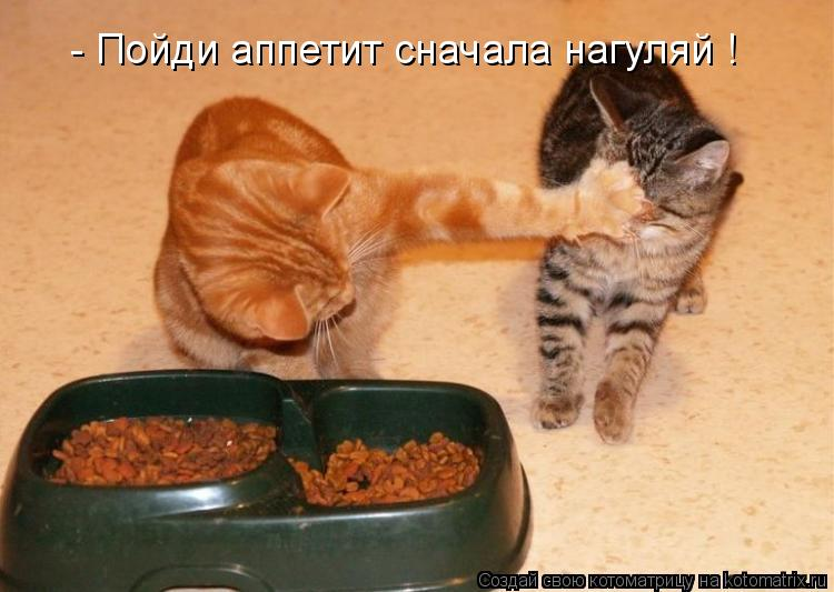 Котоматрица: - Пойди аппетит сначала нагуляй !