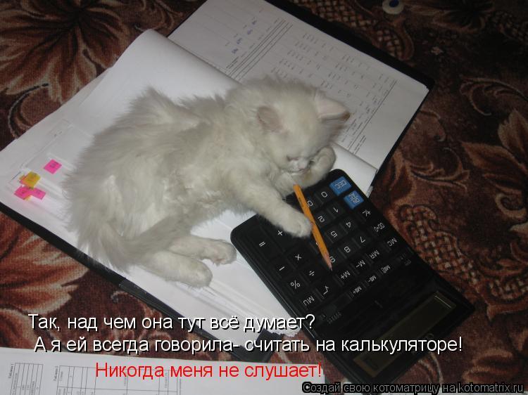 Котоматрица: Так, над чем она тут всё думает? А я ей всегда говорила- считать на калькуляторе! Никогда меня не слушает!