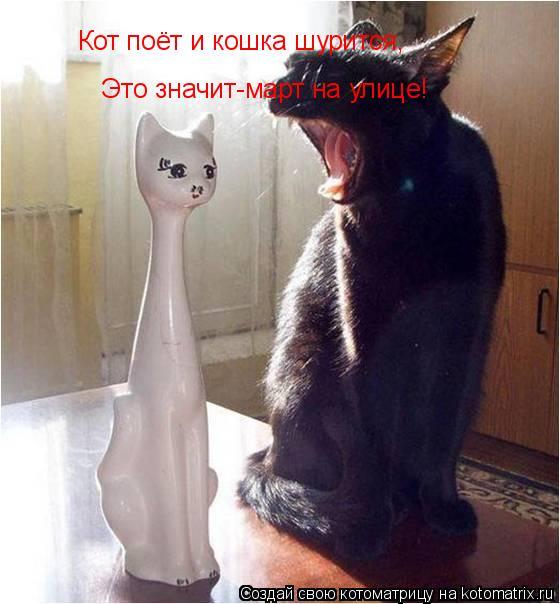 Котоматрица: Кот поёт и кошка шурится, Это значит-март на улице!