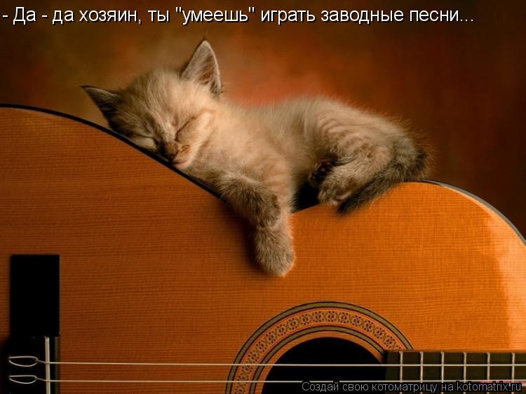 """Котоматрица: - Да - да хозяин, ты """"умеешь"""" играть заводные песни..."""
