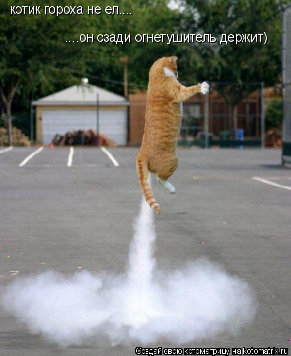 Котоматрица: котик гороха не ел.... ....он сзади огнетушитель держит)
