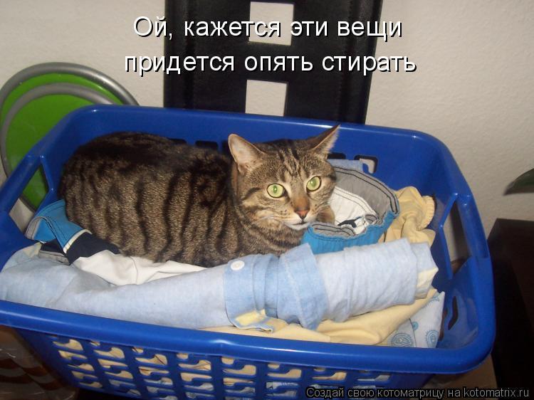 Котоматрица: Ой, кажется эти вещи придется опять стирать
