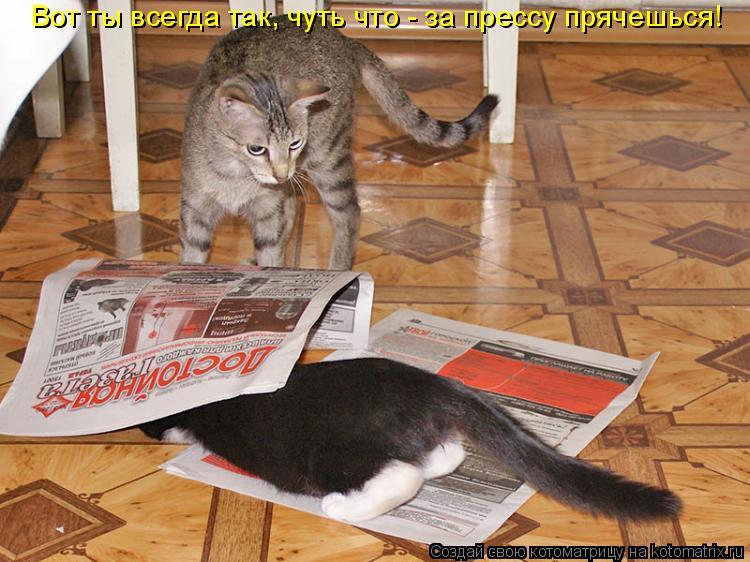 Котоматрица: Вот ты всегда так, чуть что - за прессу прячешься!