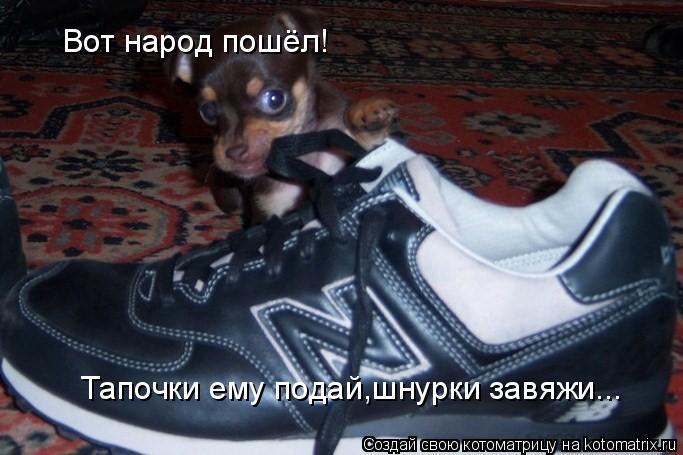 Котоматрица: Вот народ пошёл! Тапочки ему подай,шнурки завяжи...