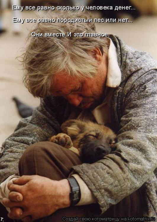 Котоматрица: Ему все равно сколько у человека денег... Ему все равно породистый пес или нет... Они вместе.И это главное.
