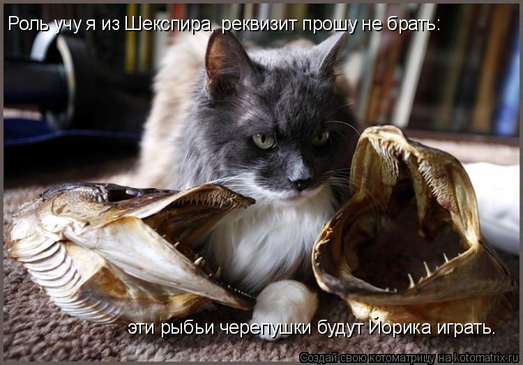 Котоматрица: Роль учу я из Шекспира, реквизит прошу не брать: эти рыбьи черепушки будут Йорика играть.