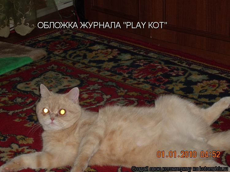 """Котоматрица: ОБЛОЖКА ЖУРНАЛА """"PLAY КОТ"""""""