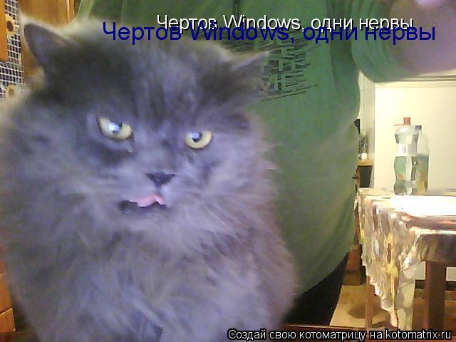 Котоматрица: Чертов Windows, одни нервы Чертов Windows, одни нервы