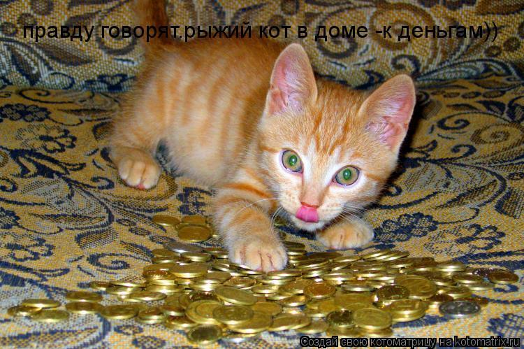 Котоматрица: правду говорят.рыжий кот в доме -к деньгам))