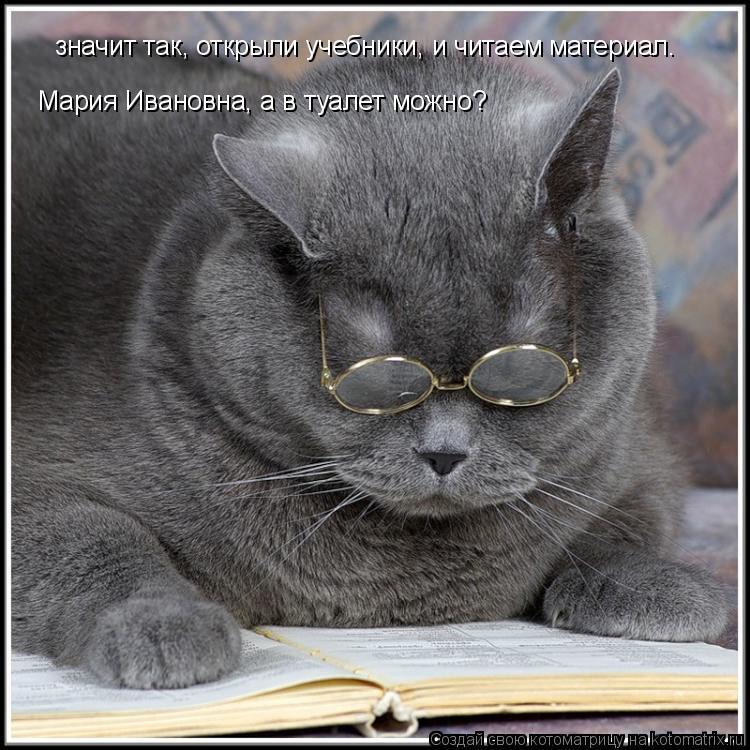 Котоматрица: значит так, открыли учебники, и читаем материал. Мария Ивановна, а в туалет можно?