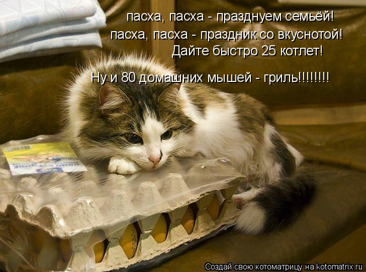 Котоматрица: пасха, пасха - празднуем семьёй! пасха, пасха - праздник со вкуснотой! Дайте быстро 25 котлет! Ну и 80 домашних мышей - гриль!!!!!!!!