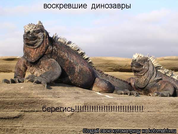 Котоматрица: воскревшие  динозавры  берегись!!!!!!!!!!!!!!!!!!!!!!!!!!!!!