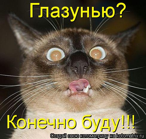 Котоматрица: Глазунью?  Конечно буду!!!