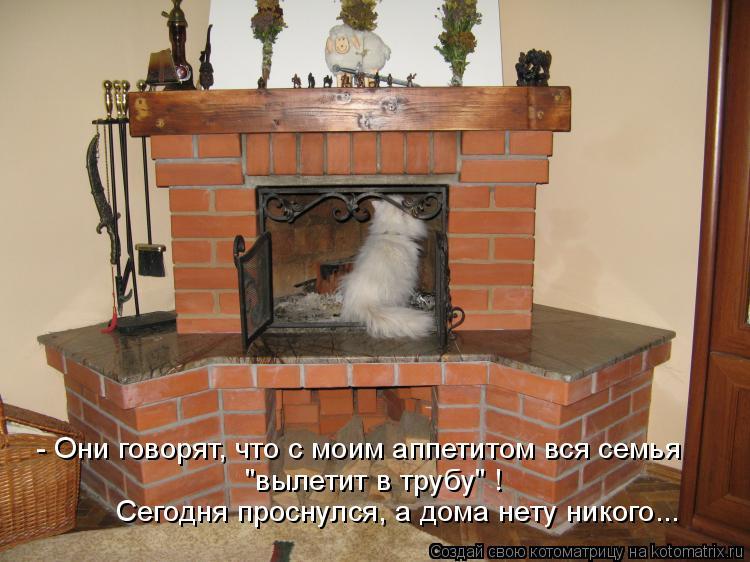 """Котоматрица: - Они говорят, что с моим аппетитом вся семья """"вылетит в трубу"""" ! Сегодня проснулся, а дома нету никого..."""
