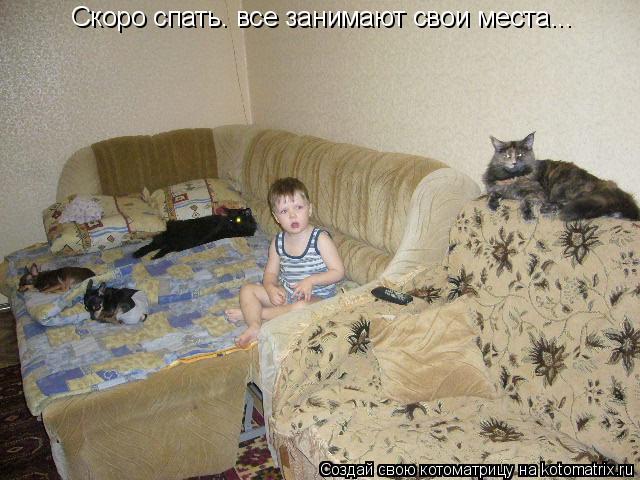 Котоматрица: Скоро спать. все занимают свои места...