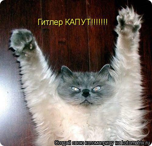 Котоматрица: Гитлер КАПУТ!!!!!!!