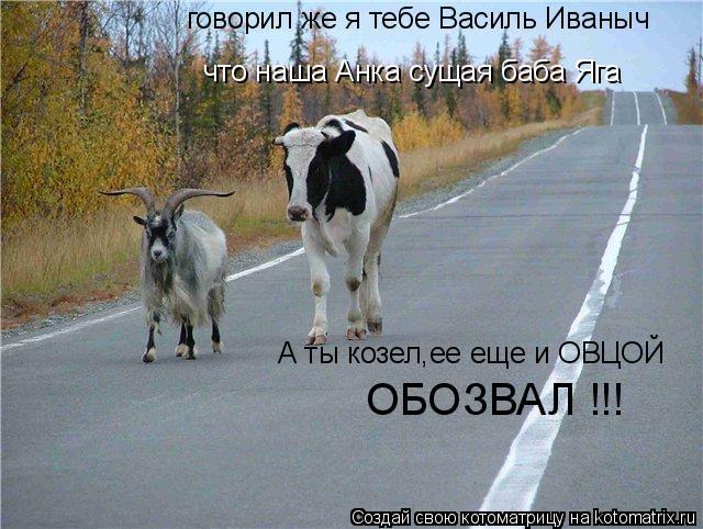 Котоматрица: говорил же я тебе Василь Иваныч  что наша Анка сущая баба Яга ОБОЗВАЛ !!! А ты козел,ее еще и ОВЦОЙ