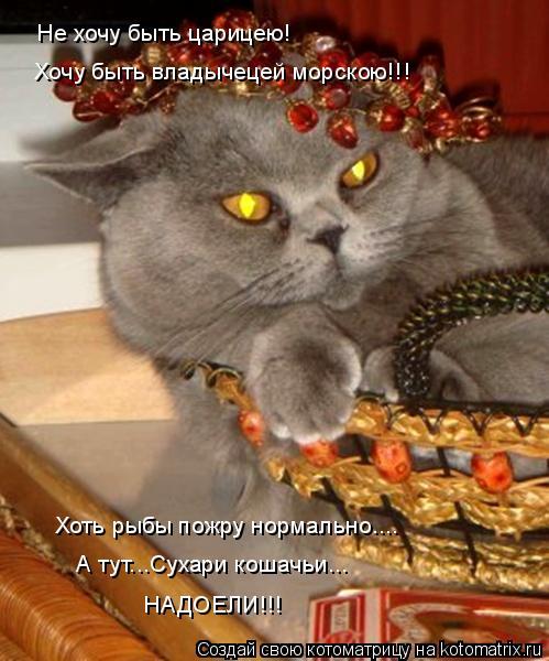 Котоматрица: Не хочу быть царицею! Хочу быть владычецей морскою!!! А тут...Сухари кошачьи... НАДОЕЛИ!!! Хоть рыбы пожру нормально....