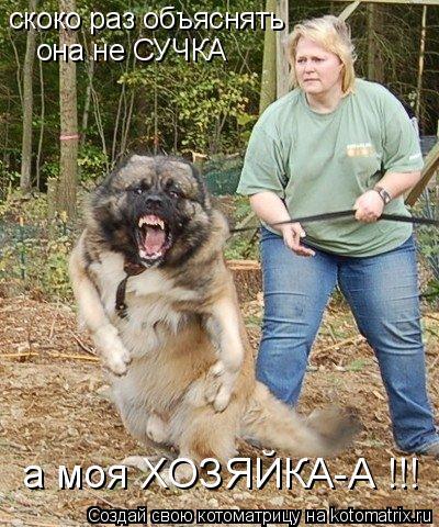 Котоматрица: скоко раз объяснять она не СУЧКА а моя ХОЗЯЙКА-А !!!