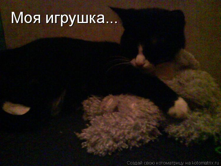 Котоматрица: Моя игрушка...