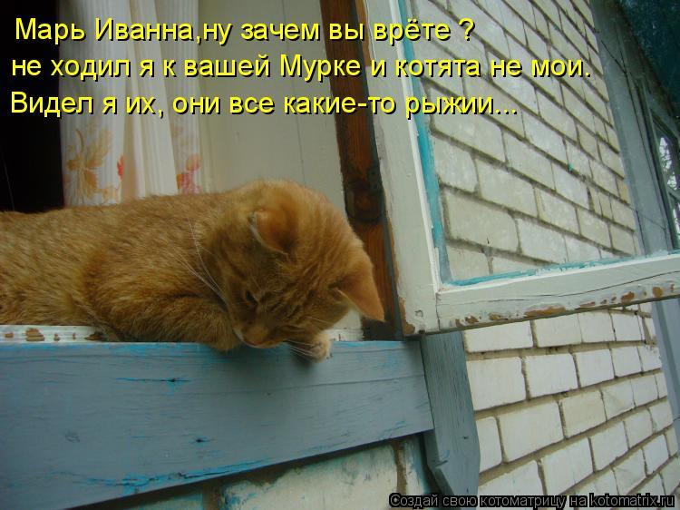 Котоматрица: Марь Иванна,ну зачем вы врёте ? не ходил я к вашей Мурке и котята не мои. Видел я их, они все какие-то рыжии...