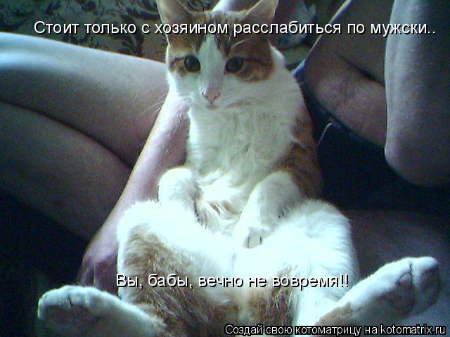 Котоматрица: Стоит только с хозяином расслабиться по мужски.. Вы, бабы, вечно не вовремя!!