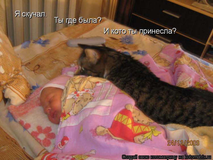 Котоматрица: Я скучал. Ты где была? И кото ты принесла?