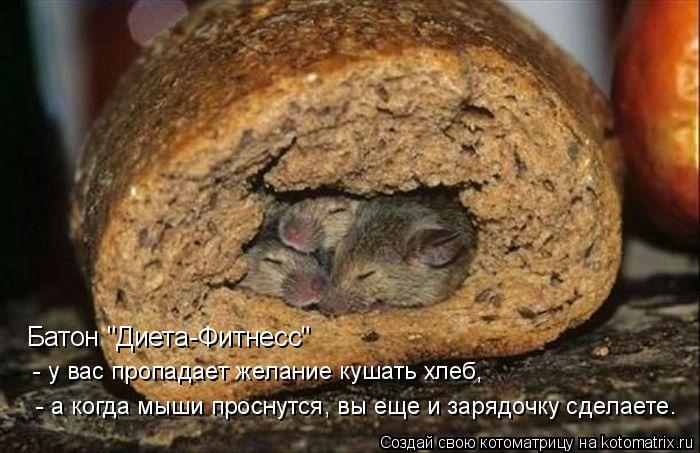 """Котоматрица: Батон """"Диета-Фитнесс""""  - у вас пропадает желание кушать хлеб,  - а когда мыши проснутся, вы еще и зарядочку сделаете."""