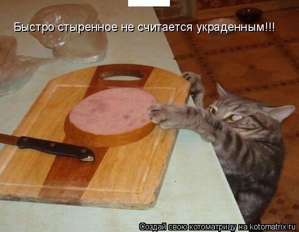 Котоматрица: Быстро стыренное не считается украденным!!!