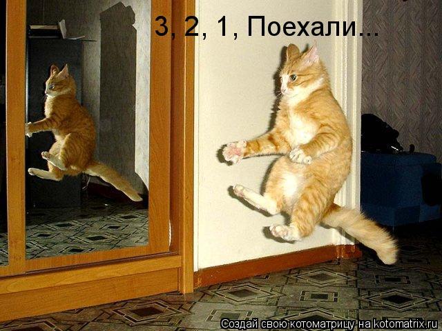 Котоматрица: 3, 2, 1, Поехали...