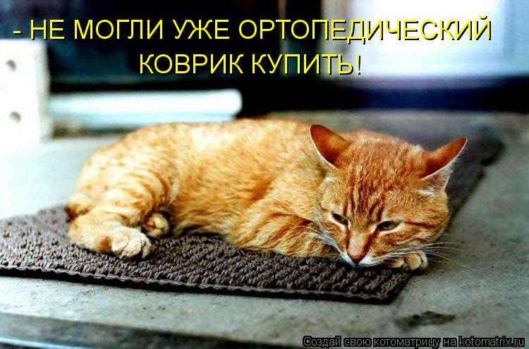 Котоматрица: - НЕ МОГЛИ УЖЕ ОРТОПЕДИЧЕСКИЙ  КОВРИК КУПИТЬ!