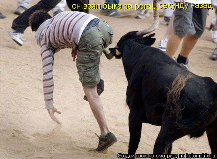 Котоматрица: он взял быка за рога!.. секунду назад