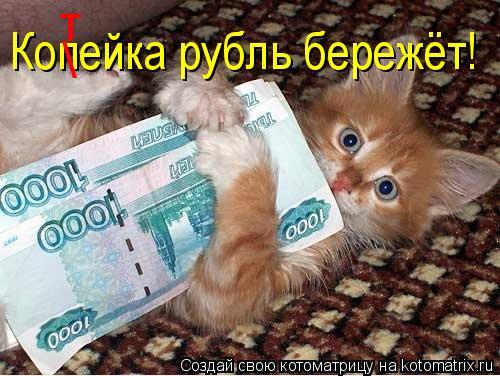 Котоматрица: Копейка рубль бережёт!  т