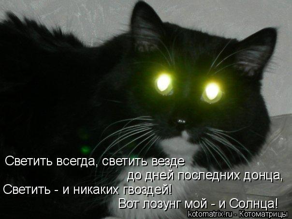 Котоматрица: Светить всегда, светить везде до дней последних донца, Светить - и никаких гвоздей! Вот лозунг мой - и Солнца!