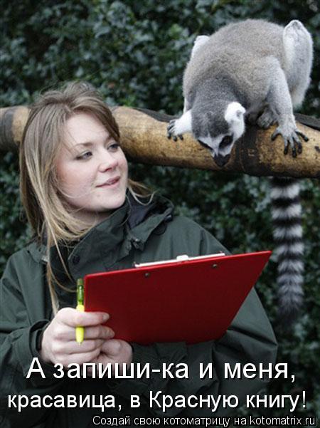 Котоматрица: А запиши-ка и меня, красавица, в Красную книгу!