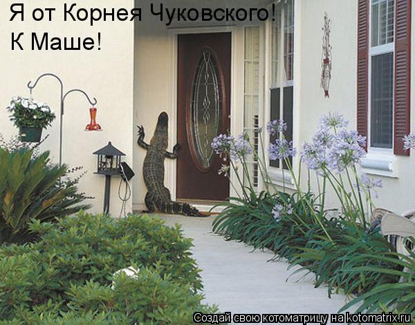 Котоматрица: Я от Корнея Чуковского! К Маше!