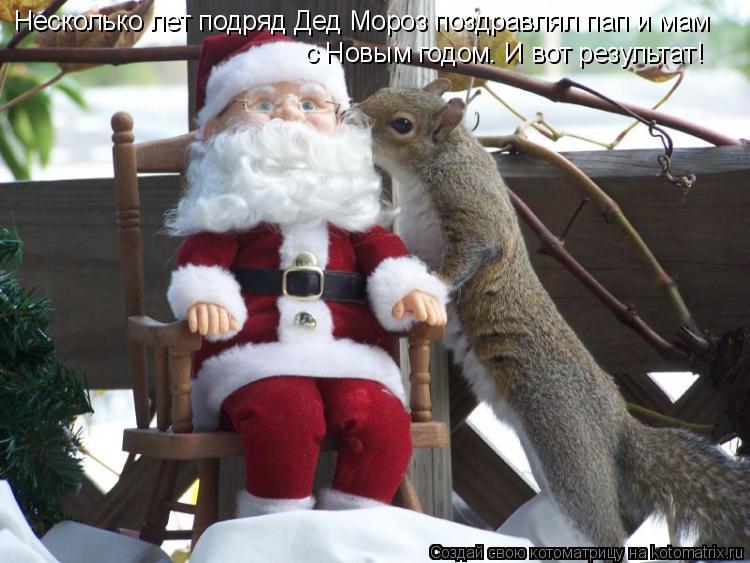 Котоматрица: Несколько лет подряд Дед Мороз поздравлял пап и мам  с Новым годом. И вот результат!