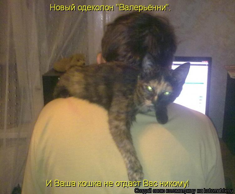 """Котоматрица: Новый одеколон """"Валерьённи"""".  И Ваша кошка не отдаст Вас никому!"""