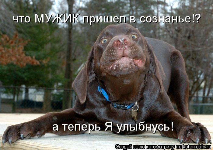Котоматрица: что МУЖИК пришел в сознанье!? а теперь Я улыбнусь!